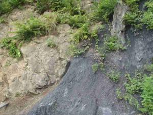 右側の三波川変成帯、左側の領家変成帯