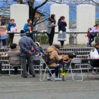下島さくら祭り平成29年4月1日
