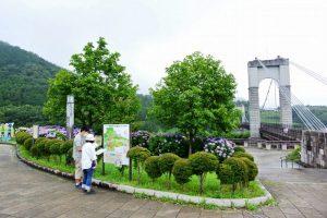 9CP:戸川公園