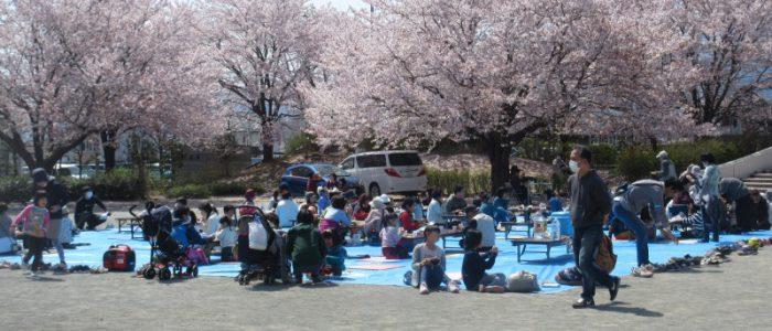 2018年3月31日 下島桜まつり