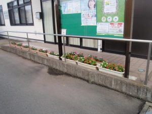 自治会館前のお花達②