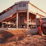 1985年(昭和60年)3月14日 開成駅開業 西側より